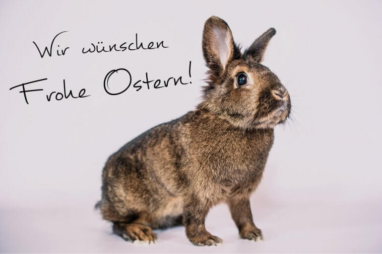 Frohe Ostern ZML